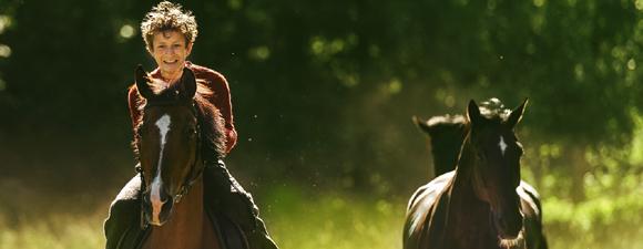 Ut och stjäla hästar
